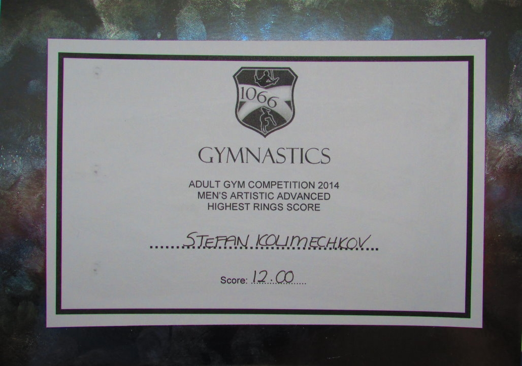 1066 Gymnastics Academy 2014 Competition - Rings
