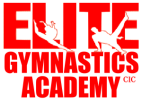 Elite Gymnastics Academy London UK