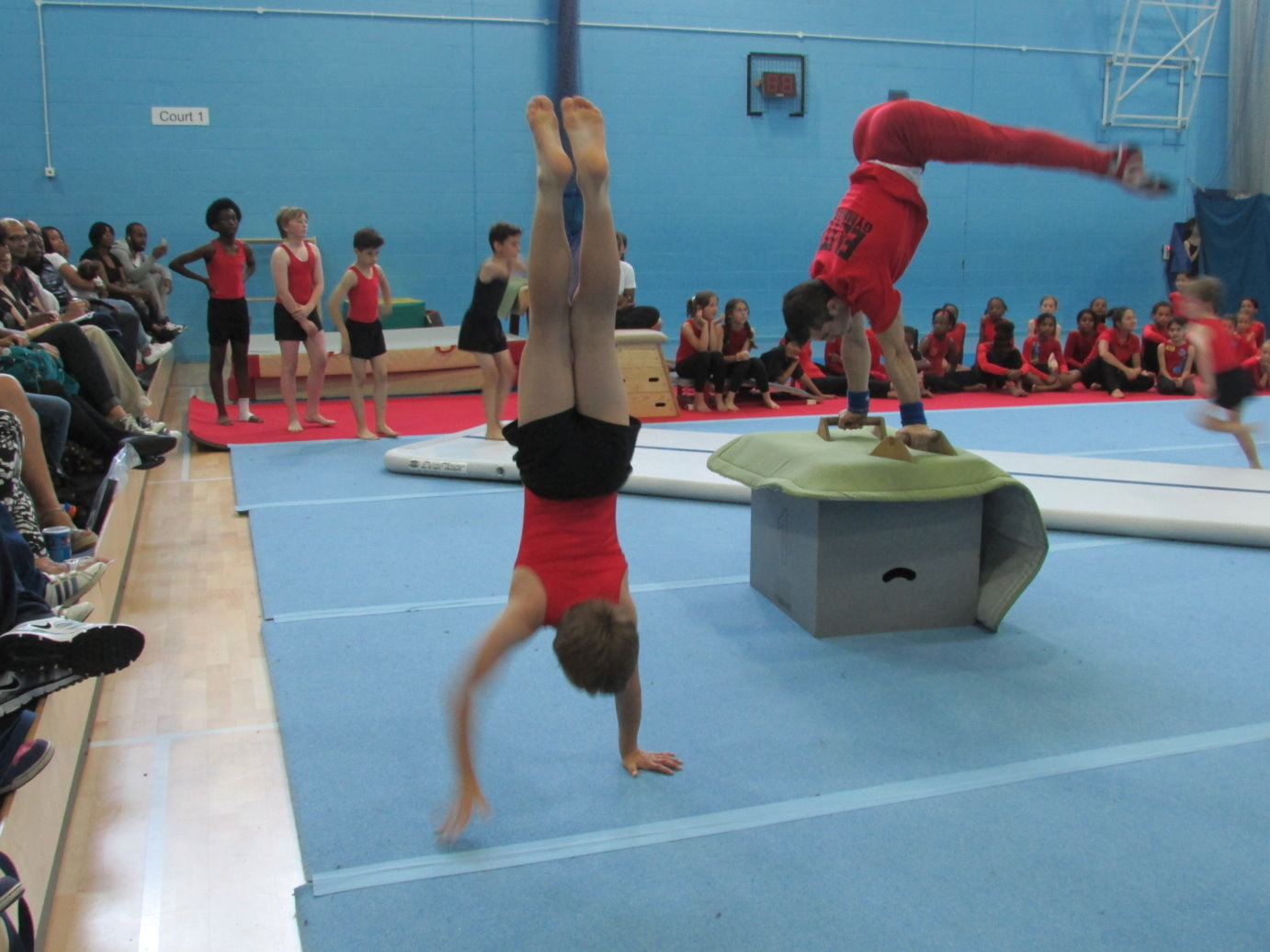 Elite Gymnastics Club Performance