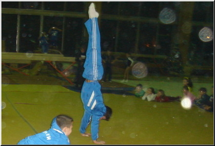 Our Floor Performance - 2006 Levski