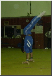 Gymnastics Style and Technique