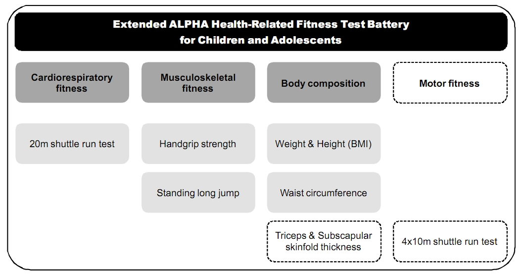 what is battery test in physical fitness