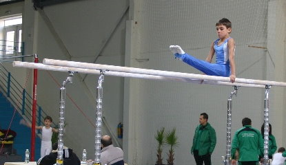 Bronze medal on Parallel bars