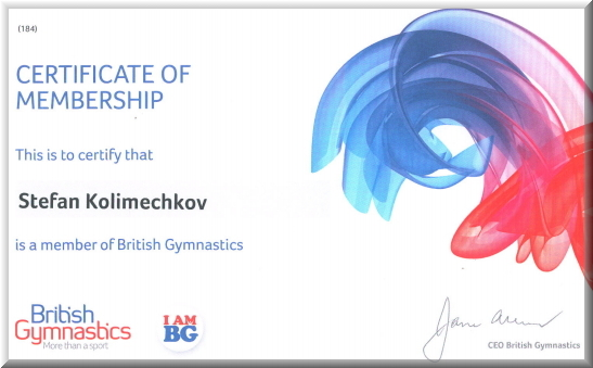 British Gymnastics | Year 2013